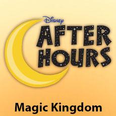 Disney After Hours no Magic Kingdom